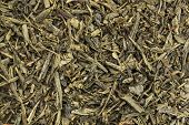 background texture of Sencha green tea - fresh, sweet, delicate tea presented as slender, needle-sha