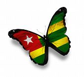 Togo Flag Butterfly, Isolated On White