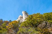 Rock Mountain With Changing Leaves At Seoraksan National Park