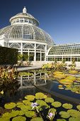 Waterlily Pond And Greenhouse