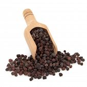 Schisandra berries used in chinese herbal medicine in a wooden scoop over white background. Wu wei z