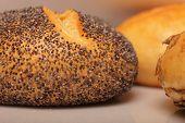 Poppy Seed Bread Loaf