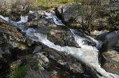 Rapids on the Marteg River
