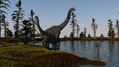 brachiosaurus in lake water near the shore