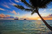 pacific sunrise at lanikai hawaii