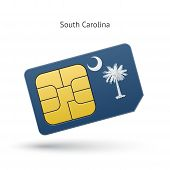 image of south american flag  - State of South Carolina phone sim card with flag - JPG