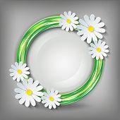 ������, ������: Eco Stylish Background With 3D Chamomile