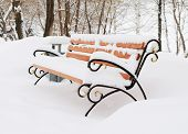 Bench In Snow-covered Winter Park