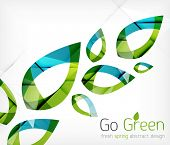 pic of tree leaves  - Green leaves spring nature design concept - JPG