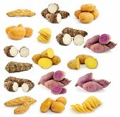 picture of root-crops  - taro roots sweet potatoes Potato chips on white background - JPG