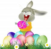 Happy Rabbit and Easter Eggs on white background.Holiday Happy Easter.