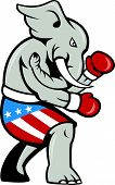 Elephant Mascot Boxer Boxing Side Cartoon