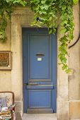 picture of creeper  - Old blue entrance door to the house with creeper - JPG