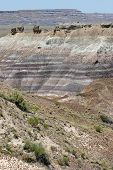 Colorful Painted Desert Rock Striations
