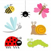 Cute Cartoon Insect Set. Ladybug, Dragonfly, Butterfly,  Spider, Snail. Isolated.