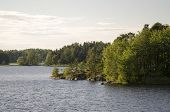pic of backwoods  - Beautiful and clean lakes and forests of Finland - JPG