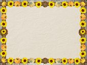 Rough Textured Background With Autumnal Frame Of Sunflowers And Pumpkins