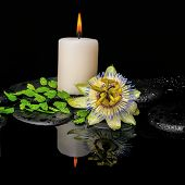 Spa Still Life Of Passiflora Flower, Green Leaf Fern With Drop And Candle On Zen Stones In Reflectio