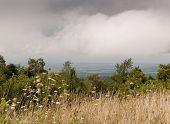 Shenandoah National Park scenic drive