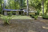foto of house woods  - Big house in the woods with brick front wall trim and walkout deck - JPG