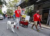 Human & canine activists march