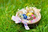 Basket With Easter Colorful Eggs And Flowers On Wet After Rain Grass