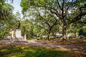 Savannah Park With Statue