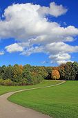 Winding Road In The Park, Landscape With Beautiful Clouds