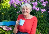 picture of coffee coffee plant  - Close up Happy Grandma in Red Shirt Having a Cup of Coffee at the Garden with Flower Plants at the Background - JPG
