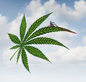 picture of marijuana leaf  - Marijuana concept and cannabis leaf flying high with a person guiding the medicinal plant as a symbol for the social issues of recreational drugs - JPG