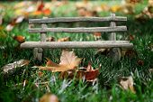 Collage bench in autumn grass. macro photo