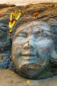 picture of shiva  - closeup facial image of Shiva on the beach - JPG