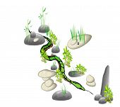 picture of sneak  - a snake sneaking among the stones and herbs - JPG