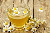 picture of chamomile  - cup of chamomile tea with chamomile flowers - JPG