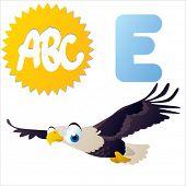cute vector comic cartoon animals abc: E is for Eagle
