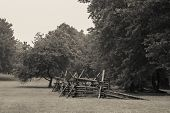 stock photo of battlefield  - An age toned black and white photograph of Monmouth Battlefield State Park in New Jersey - JPG