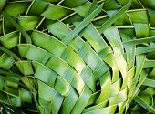 Woven Coconut Leaves