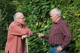 picture of spade  - two senior men standing in garden and discussing one is holding spade - JPG