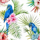 picture of jungle flowers  - Beautiful vector pattern with nice watercolor tropical flowers - JPG