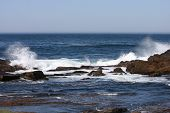 picture of off-shore  - This image was taken at Point Lobos State Preserve in Carmel - JPG