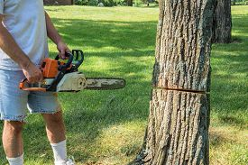 image of man chainsaw  - A man in a yard wearing a t - JPG