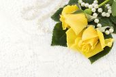 Yellow Roses On Lace Background