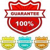 Vector guarantee label. Vector set