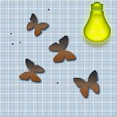 image of screen-porch  - moths drawn to the light concept irresistable - JPG