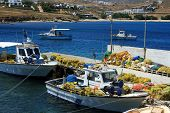 Fishing Port On Mykonos, Cyclades