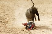 image of bull riding  - the bull riding event at a rodeo in arizona - JPG
