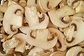 Mushrooms Background