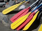 Rafting Paddles
