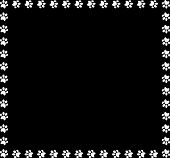 Square Frame Made Of White Animal Paw Prints On Black Background. Vector Illustration, Template, Bor poster
