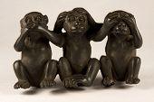 Affen Zahlen